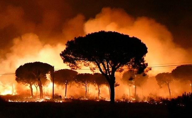 Hiszpania: Polscy turyści ewakuowani z hotelu z powodu pożaru lasu