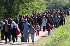 Hiszpania: Tysiące imigrantów z fałszywymi wizami