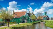 Holandia jest krajem chętnie wybieranym przez emigrantów zarobkowych