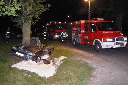 Honda bokiem uderzył w przydrożne drzewo /Policja