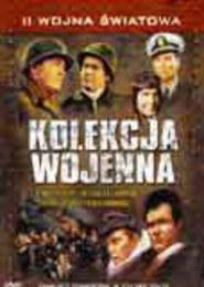 II Wojna Światowa - Kolekcja wojenna. 4 płyty DVD