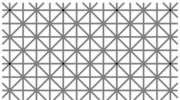 Ile widzisz kropek? Niezwykła zagadka hitem sieci