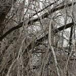 IMGW ostrzega przed mrozem i śniegiem. Alert dla 5 województw