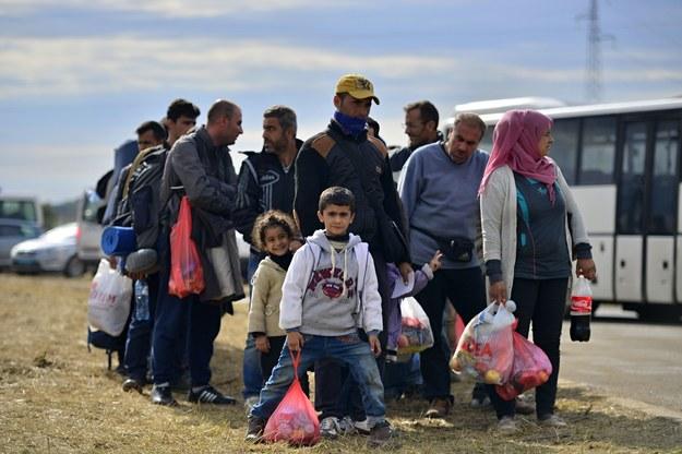 Imigranci szansą dla rynku pracy? /123RF/PICSEL