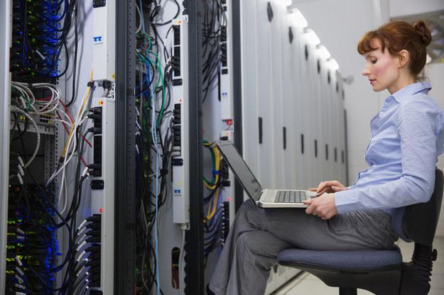 Informatyczny rynek pracy potrzebuje coraz większej liczby pracowników /123RF/PICSEL