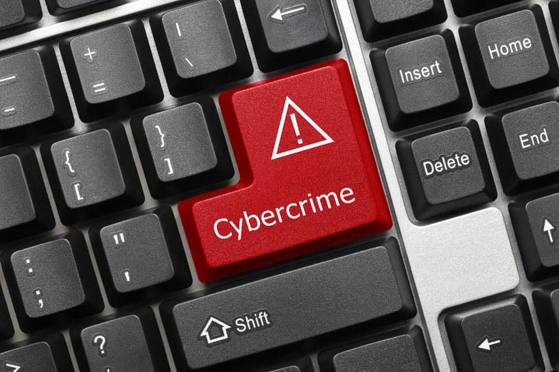 Informatykę śledczą coraz częściej wykorzystuje się w sprawach związanych z prowadzoną działalnością biznesową /123RF/PICSEL