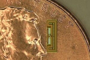 Internet rzeczy stał się realny - bezprzewodowe radio wielkości mrówki