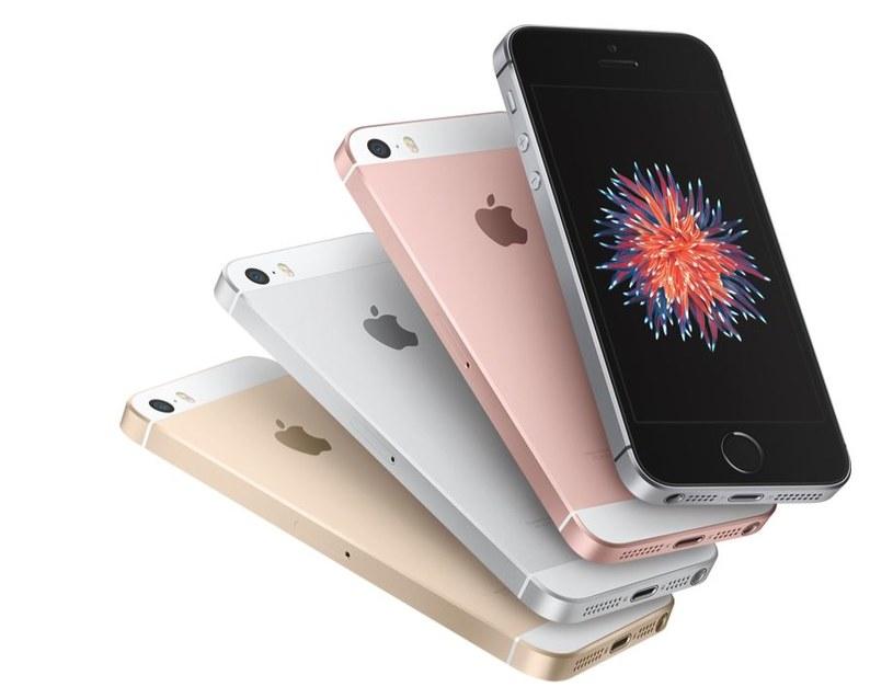 iPhone SE ma wielu fanów /materiały prasowe