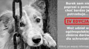 "IV edycja akcji ""Burek sam nie poprosi o pomoc"""