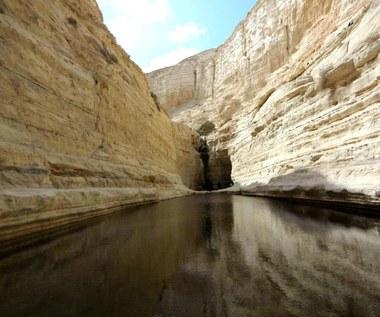 Izrael: Pustynia Negew