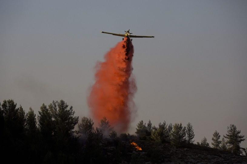 Izrael walczy z pożarami lasów /ABIR SULTAN /PAP/EPA
