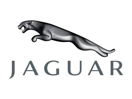 JAGUAR - drapieżny kot w skoku /Jaguar