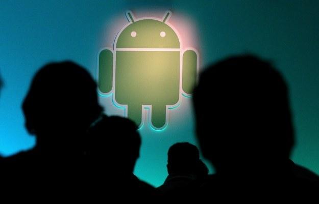 Jak bardzo zaaawansowane są prace nad kolejną wersją Androida? /AFP