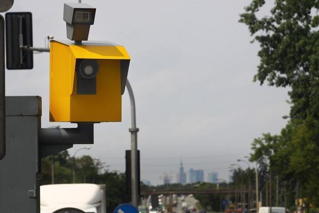 Jak nie płacić mandatów z fotoradarów? / Fot: Wojciech Traczyk /East News
