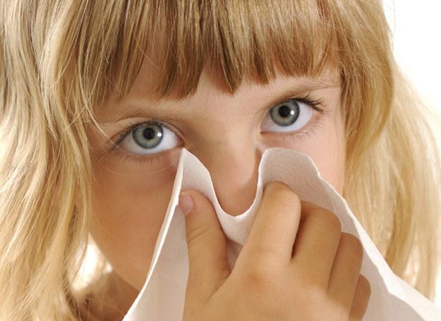 Jak pomóc alergicznemu dziecku? Sparwdź! /123RF/PICSEL