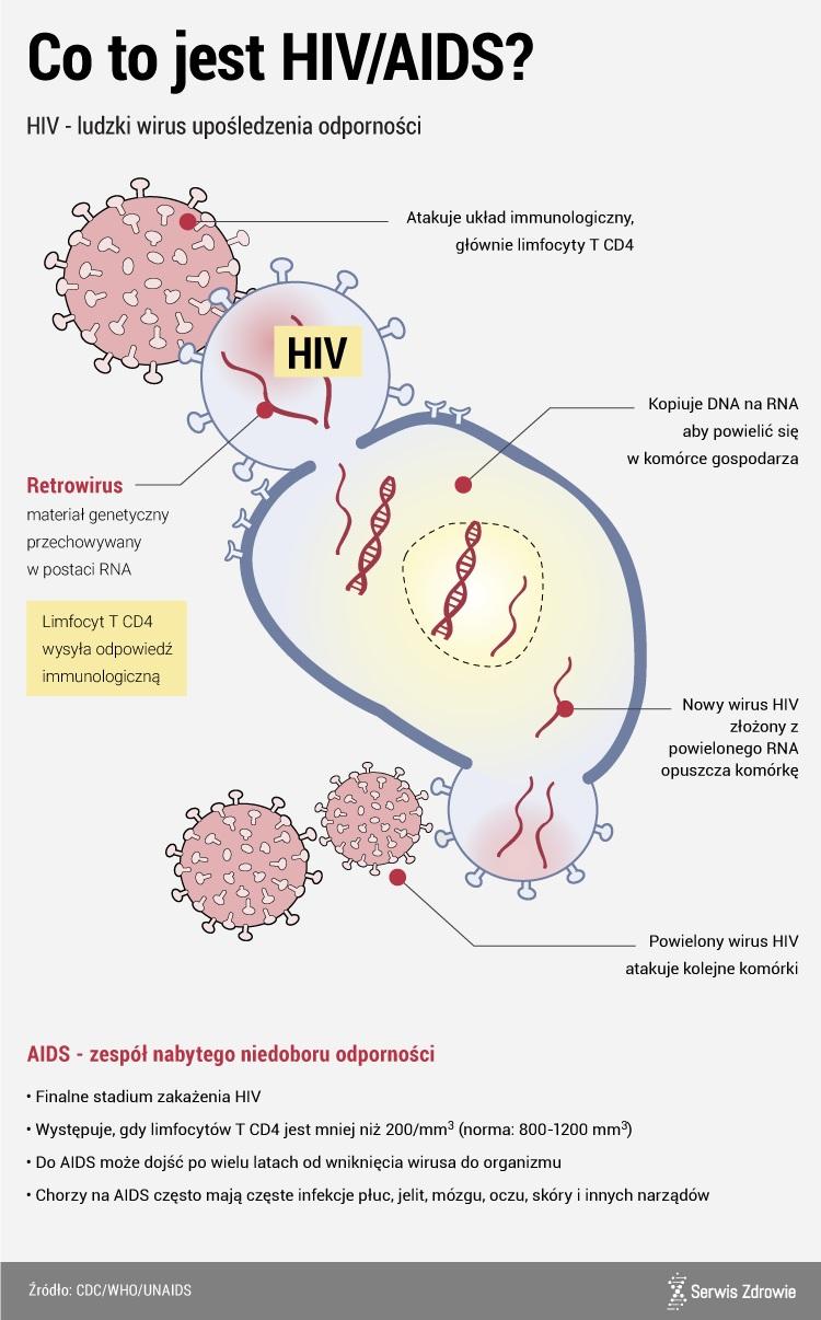 Jak przebiega zakażenie HIV /www.zdrowie.pap.pl