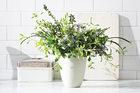 Jak przechowywać świeże zioła
