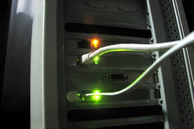 Jak ściągać, to z rządowych serwerów  fot. Anna /stock.xchng