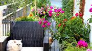 Jak stworzyć na balkonie przytulny klimat