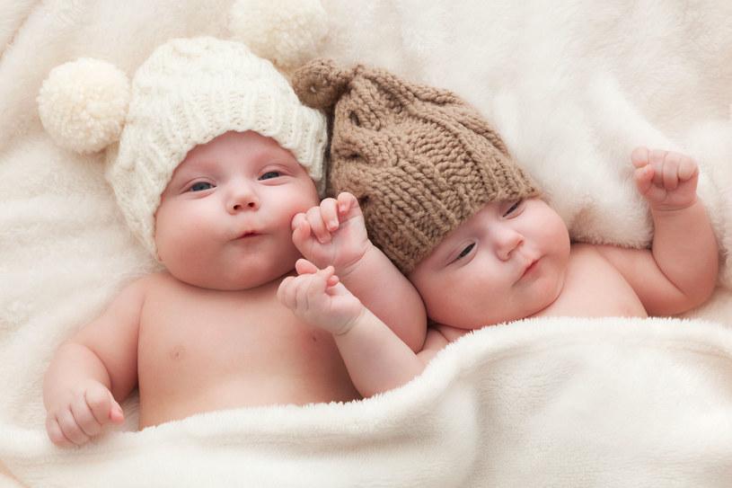 Jak tu nie wierzyć w niezwykłe porozumienie między bliźniętami? /123RF/PICSEL