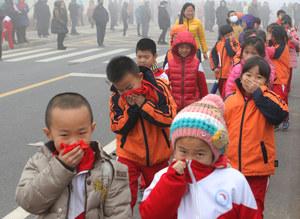 Jak walczyć ze smogiem?