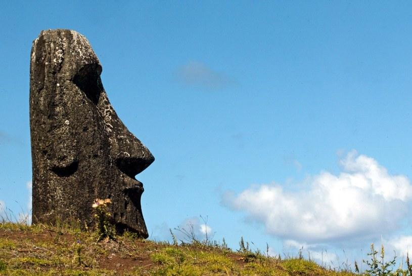 Jak wyginęła cywilizacja zamieszkująca Wyspę Wielkanocną? /AFP