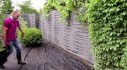 Jak zaaranżować ogród jako miejsce do rekreacji i wypoczynku