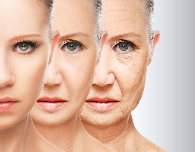 Jak zachodzą procesy starzenia - tłumaczy dr Marek Wasiluk /123RF/PICSEL