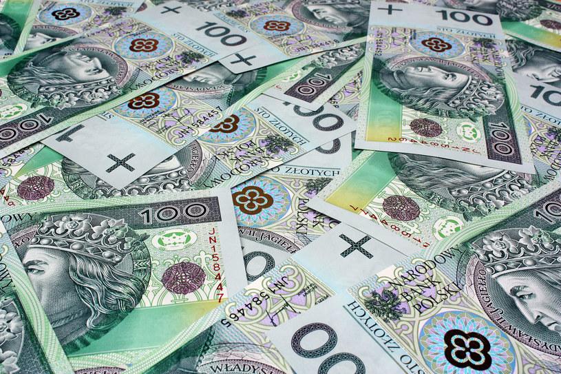Jak znaleźć pieniądze nie wychodząc z domu? (Zdj, ilustracyjne) /123RF/PICSEL