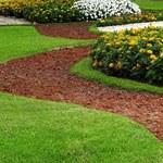 Jakie prace ogrodowe zaplanować w kwietniu?