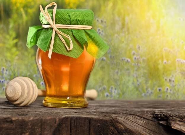 Jakie właściwości zdrowotne ma miód manuka? /123RF/PICSEL