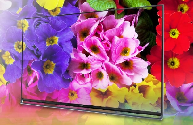 Jakość kolorów oraz poziom oddania szczegółów (w przypadku materiałów 4K) robią wrażenie /materiały prasowe