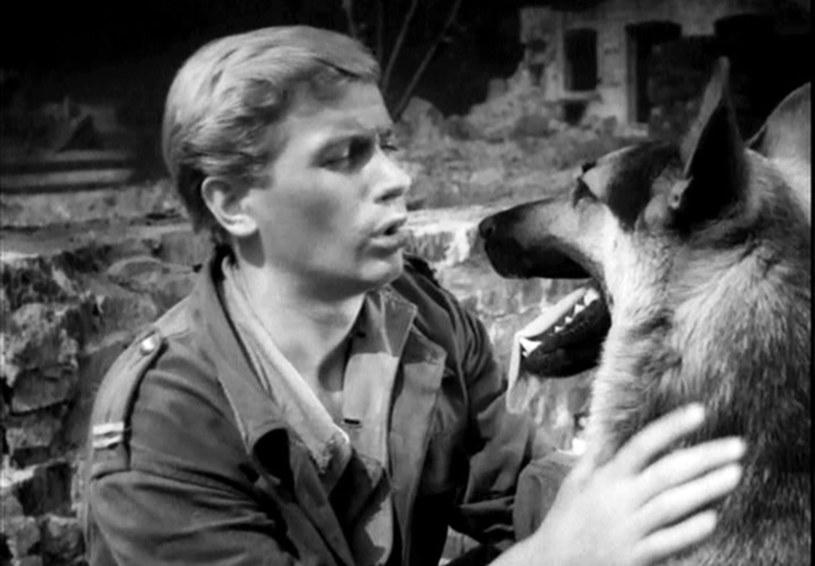 Janusz Gajos i pies grający Szarika /East News
