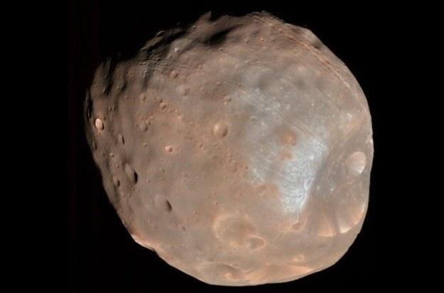 Japońska sonda ma pobrać próbki gruntu z Fobosa (na zdjęciu) i Deimosa. /NASA