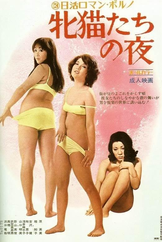 """Japoński plakat """"Nocy kociaków"""" /materiały dystrybutora"""
