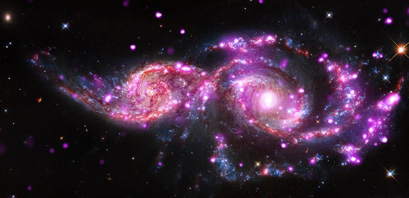 Jeden z obiektów ULX uchwycony przez Kosmiczny Teleskop Chandra /NASA