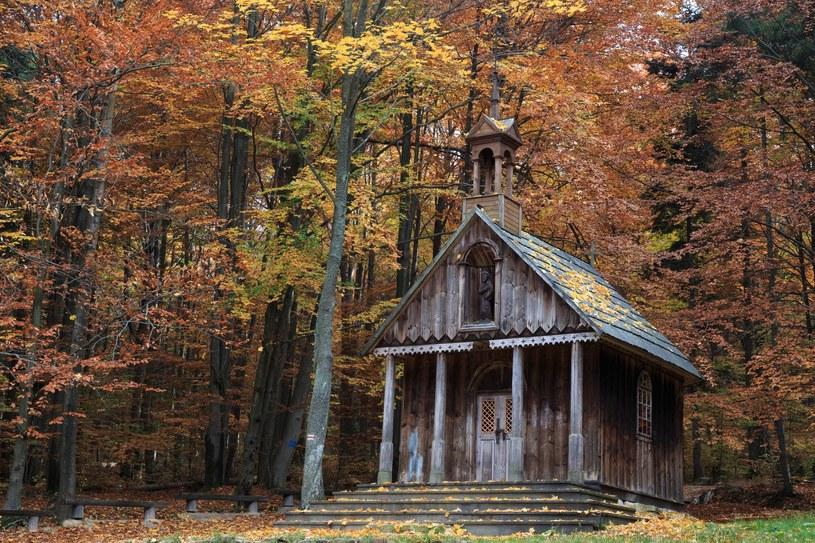 Jesienią jest tam najpiękniej /East News