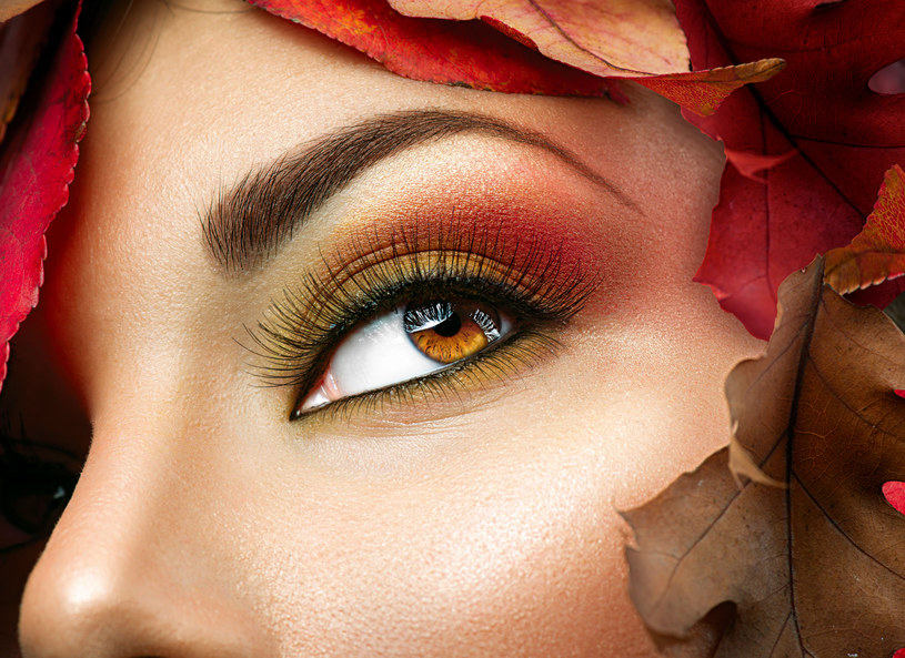 Jesienią królują brazy /123RF/PICSEL