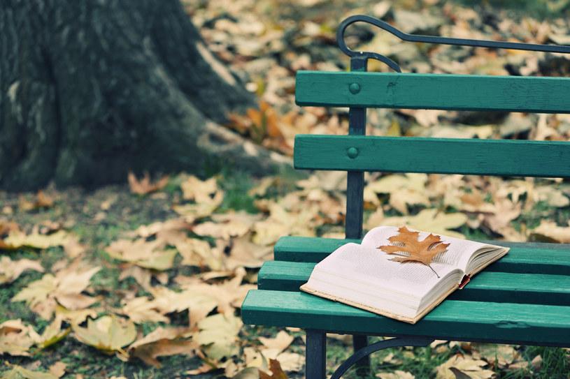 Jesienna aura sprzyja zadumie /123RF/PICSEL
