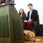 Jest wyrok za niewpuszczenie niewidomej z psem do busa