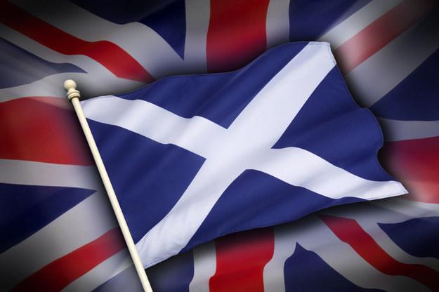 Jesteś zainteresowany pracą na Wyspach? Zwróć szczególną uwagę na Szkocję /123RF/PICSEL