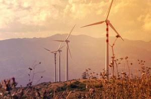 Jeszcze wydajniejsze turbiny inspirowane budową skrzydła sowy