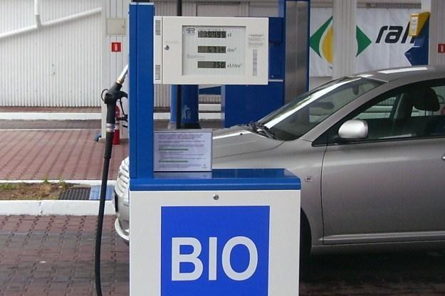 Jeździłeś na biopaliwie? /INTERIA.PL