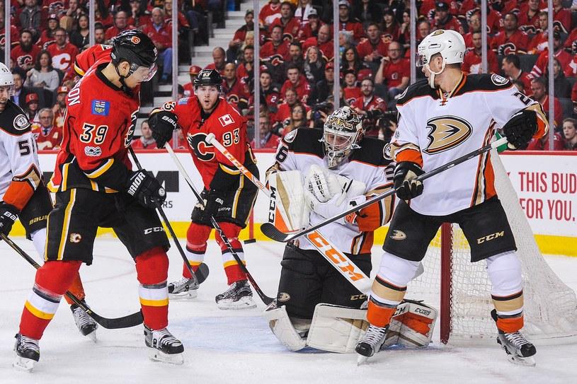 John Gibson obronił 36 uderzeń hokeistów Calgary Flames /AFP