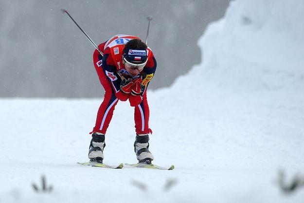 Justyna Kowalczyk na trasie biegu w Oberstdorfie /AFP