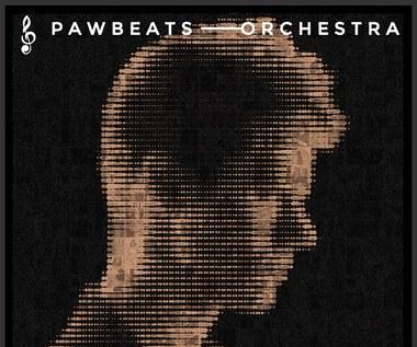 """Justyna Steczkowska i inni. Pawbeats ogłosił gości na """"Pawbeats Orchestra""""."""