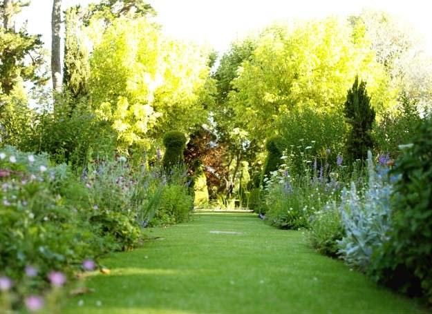 Już dzisiaj zacznij dbać o ogród