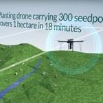 Już niedługo inteligentne drony będą sadzić miliard drzew rocznie
