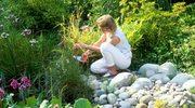 Kalendarium pielęgnacji - rośliny balkonowe