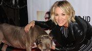 Kaley Cuoco opłakuje śmierć swojego pierwszego psa o imieniu Petey